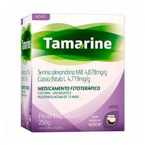 Tamarine-Geleia-Zero-Ac-250G